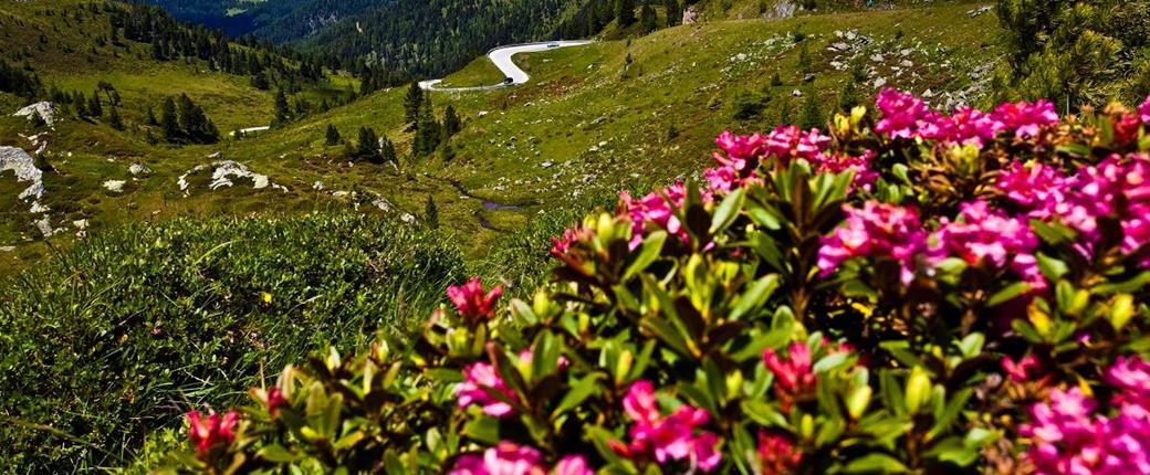 Korutany - působivá souhra hor a jezer